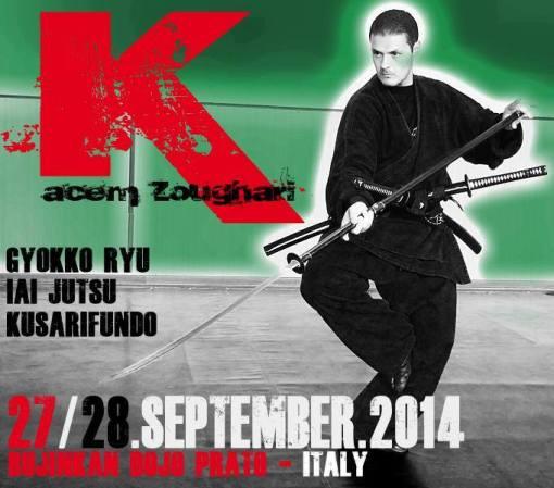 KACEM - ITALY 2014 SEMINAR